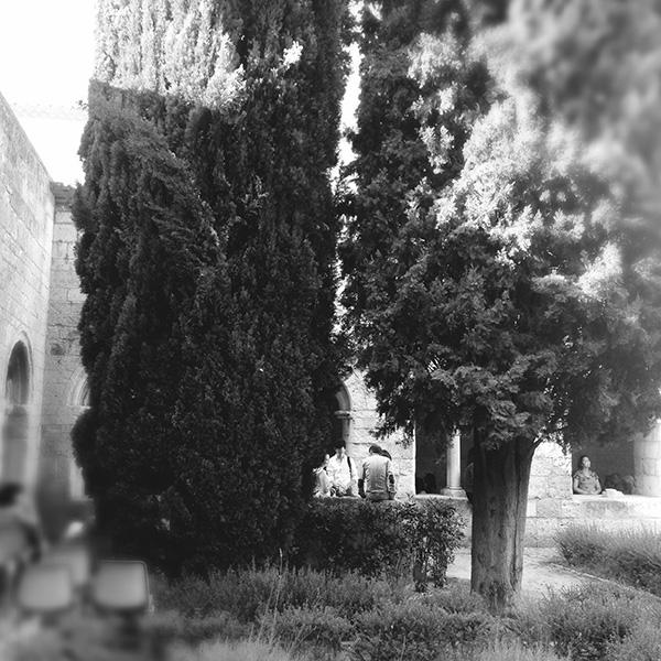 Jardin du cloître de l'abbaye de Silvacane